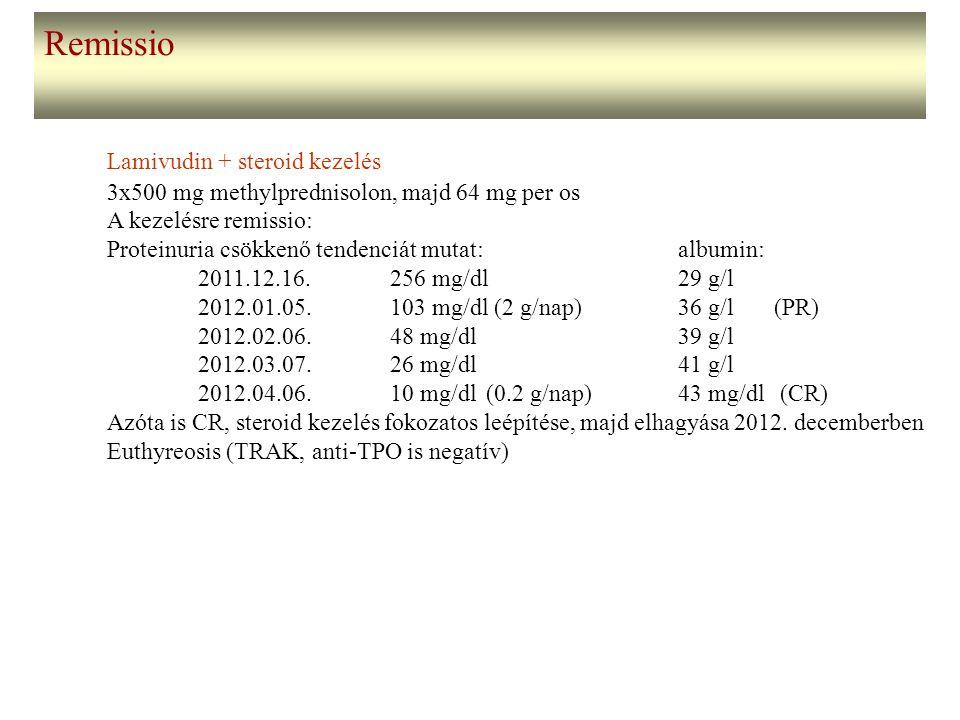 Remissio Lamivudin + steroid kezelés 3x500 mg methylprednisolon, majd 64 mg per os A kezelésre remissio: Proteinuria csökkenő tendenciát mutat: albumi