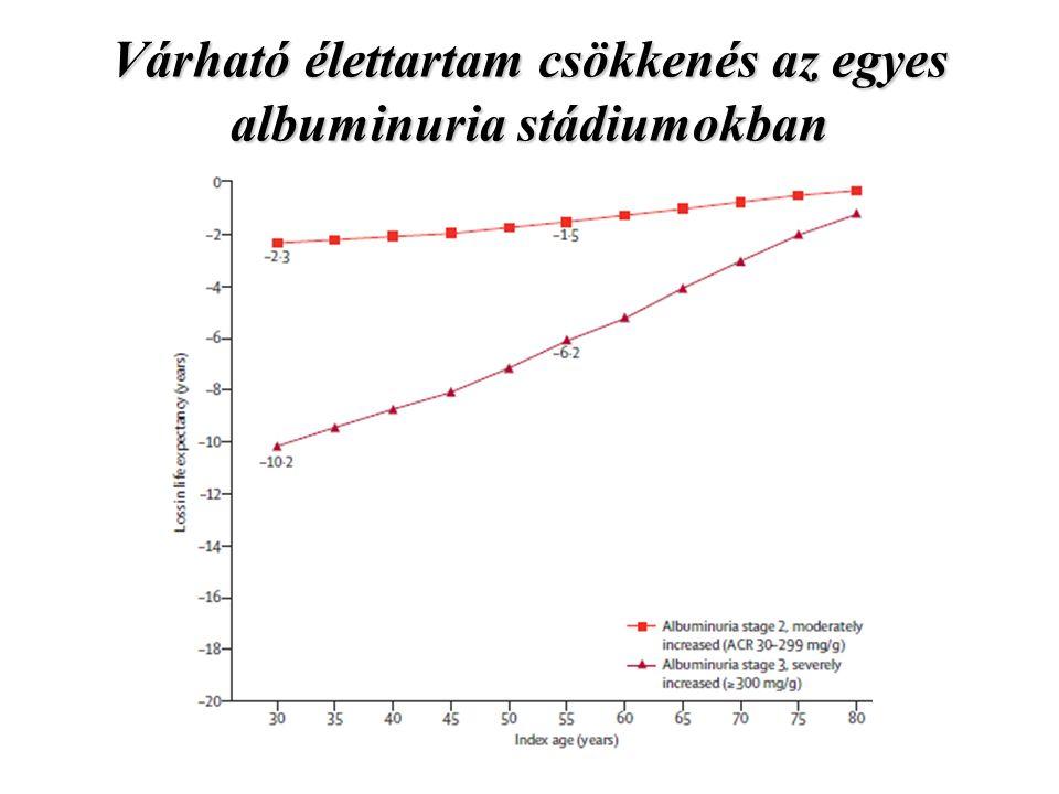 Várható élettartam csökkenés az egyes albuminuria stádiumokban