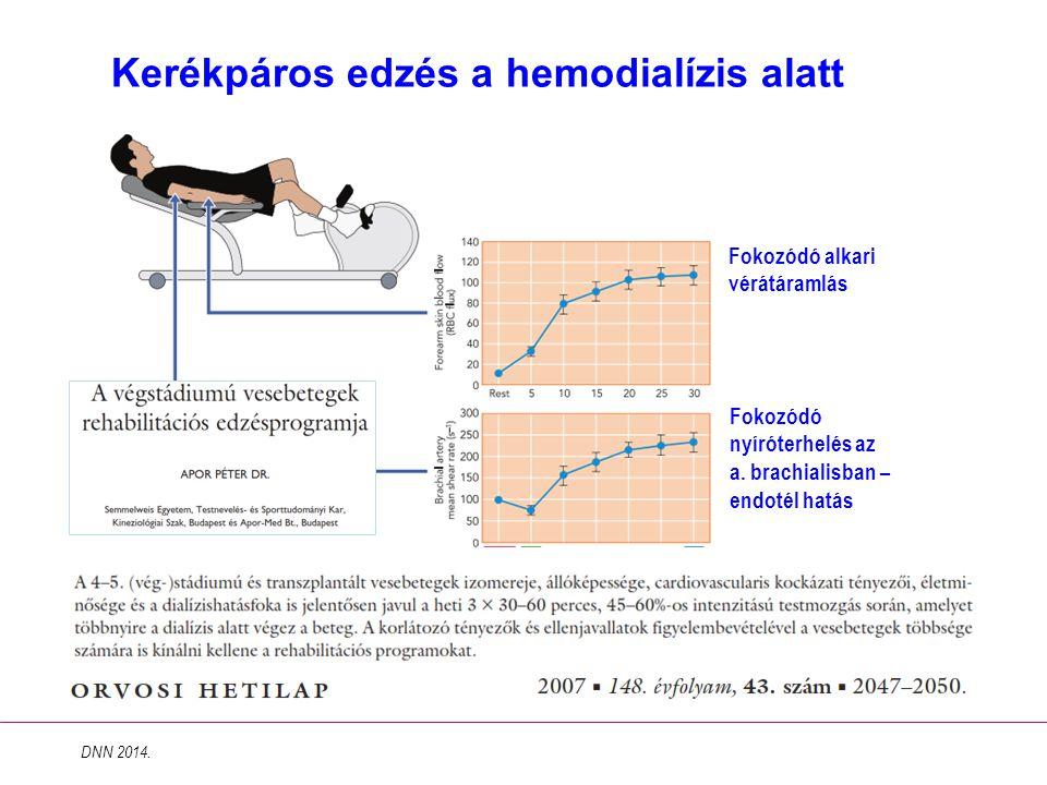 Kerékpáros edzés a hemodialízis alatt DNN 2014. Fokozódó alkari vérátáramlás Fokozódó nyíróterhelés az a. brachialisban – endotél hatás