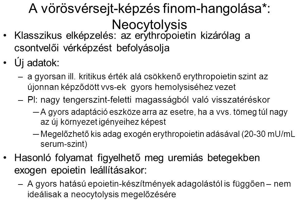 A vörösvérsejt-képzés finom-hangolása*: Neocytolysis Klasszikus elképzelés: az erythropoietin kizárólag a csontvelői vérképzést befolyásolja Új adatok: –a gyorsan ill.