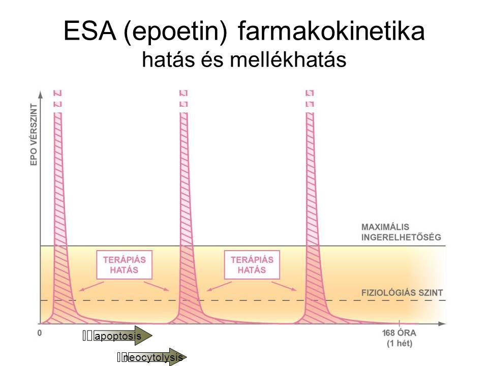 ESA (epoetin) farmakokinetika hatás és mellékhatás apoptosis neocytolysis