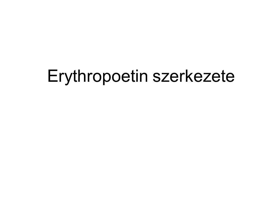 Erythropoetin szerkezete