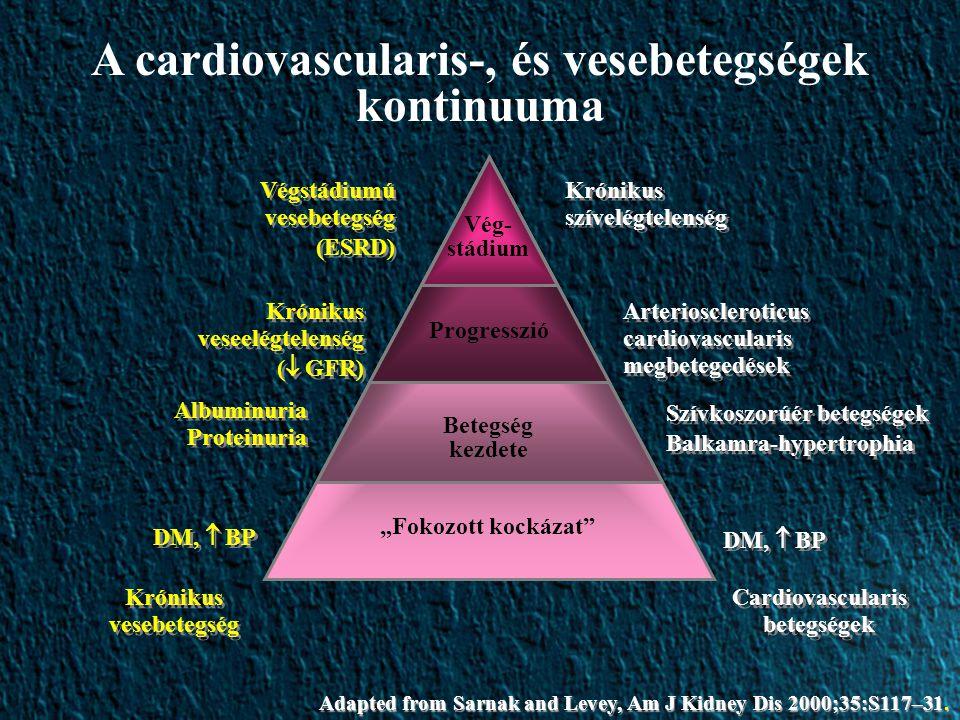 """Vég- stádium Progresszió Betegség kezdete """"Fokozott kockázat Cardiovascularis betegségek Krónikus szívelégtelenség Arterioscleroticus cardiovascularis megbetegedések Szívkoszorúér betegségek Balkamra-hypertrophia Szívkoszorúér betegségek Balkamra-hypertrophia DM,  BP Krónikus vesebetegség Végstádiumú vesebetegség (ESRD) Végstádiumú vesebetegség (ESRD) Krónikus veseelégtelenség (  GFR) Krónikus veseelégtelenség (  GFR) Albuminuria Proteinuria DM,  BP Adapted from Sarnak and Levey, Am J Kidney Dis 2000;35:S117–31."""