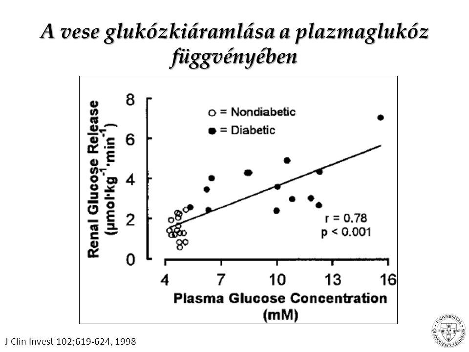 Antidiabetikus kezelés a vesefunkció függvényében GFR<60ml/min: elhagyandó metformin, SGLT2- gátlók, liraglutide GFR 30-60ml/min: adható gliclazid, gliquidon, pioglitazon, exenatid, lixiszenatid, gliptinek, inzulin.