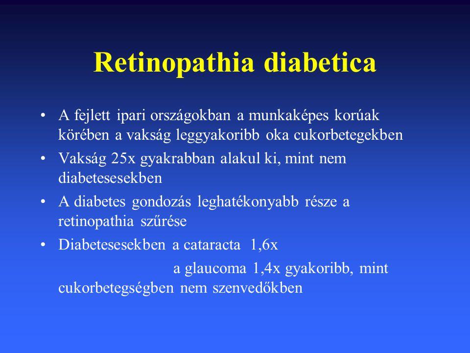 Retinopathia diabetica A fejlett ipari országokban a munkaképes korúak körében a vakság leggyakoribb oka cukorbetegekben Vakság 25x gyakrabban alakul