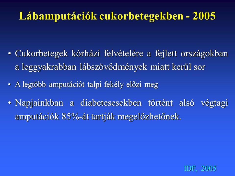 Lábamputációk cukorbetegekben - 2005 Cukorbetegek kórházi felvételére a fejlett országokban a leggyakrabban lábszövődmények miatt kerül sorCukorbetege