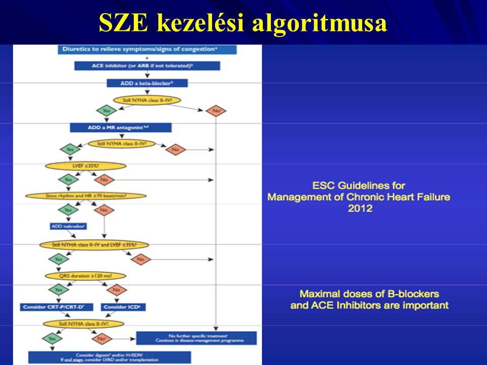 SZE kezelési algoritmusa