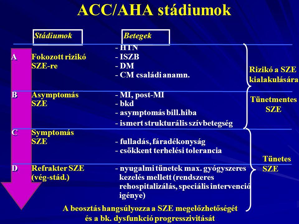 Stádiumok Betegek - HTN AFokozott rizikó- ISZB SZE-re- DM - CM családi anamn. BAsymptomás - MI, post-MI SZE- bkd - asymptomás bill.hiba - ismert struk
