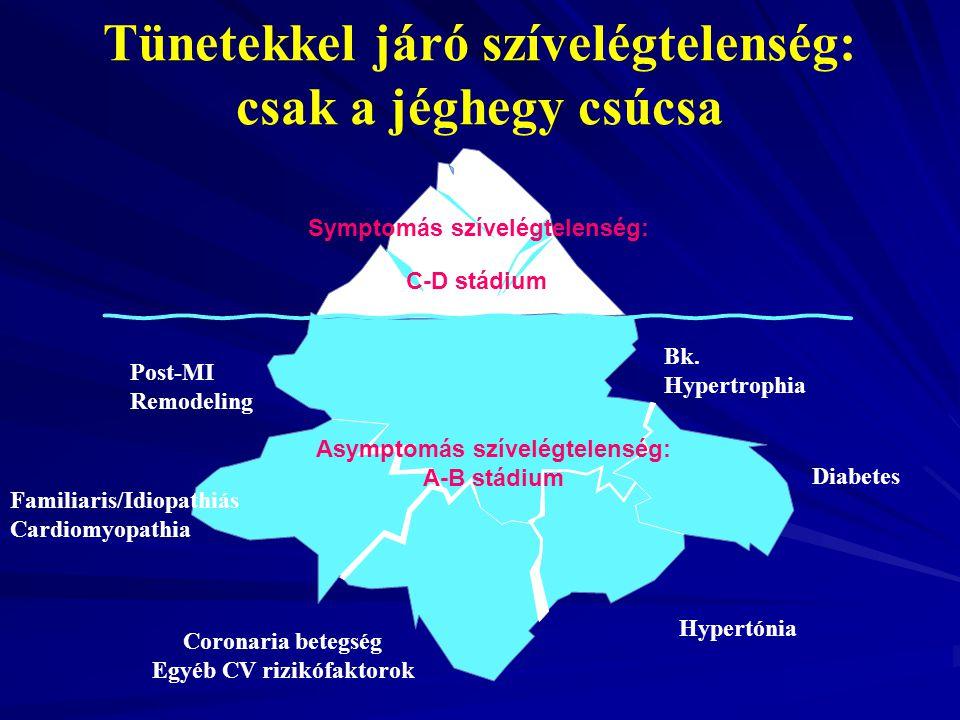 Hypertónia Bk. Hypertrophia Familiaris/Idiopathiás Cardiomyopathia Post-MI Remodeling Symptomás szívelégtelenség: Diabetes Asymptomás szívelégtelenség