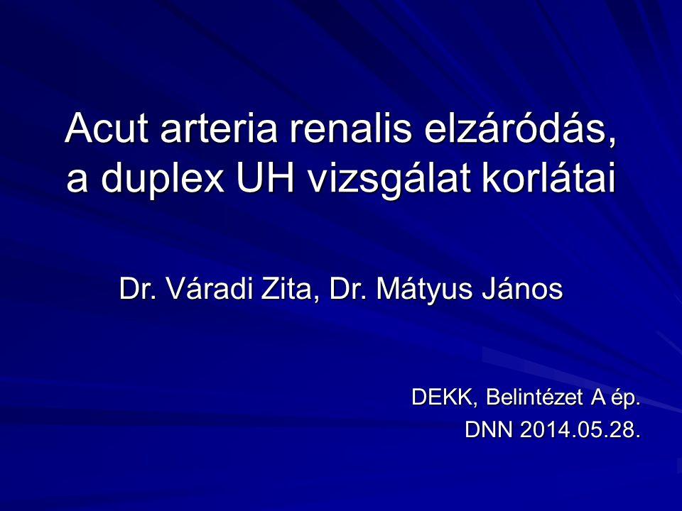Acut arteria renalis elzáródás, a duplex UH vizsgálat korlátai Dr. Váradi Zita, Dr. Mátyus János DEKK, Belintézet A ép. DNN 2014.05.28.