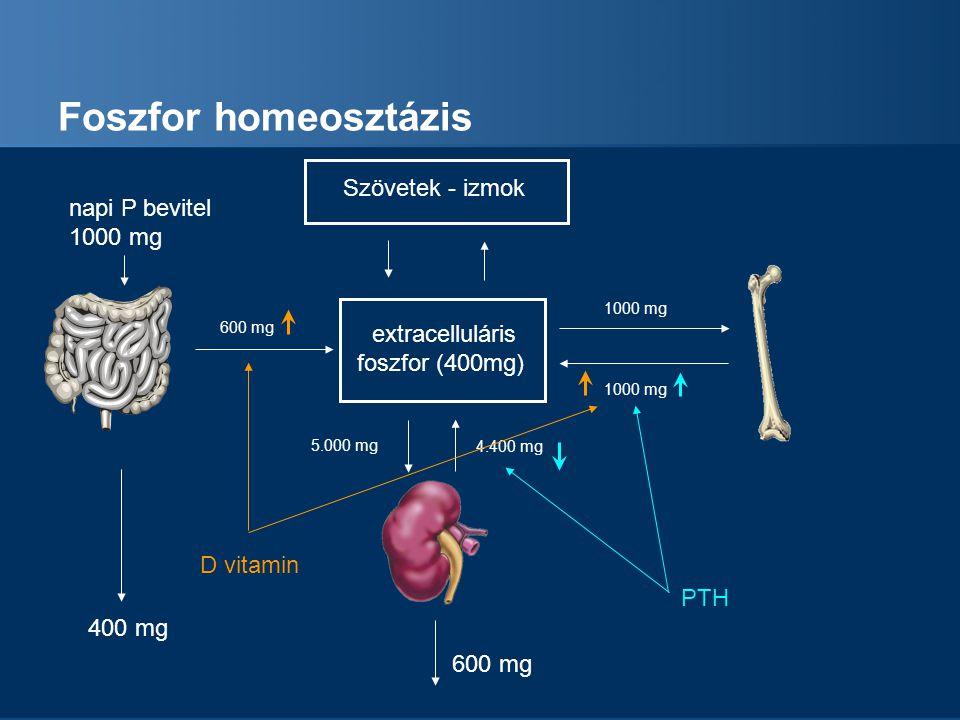 Krónikus veseelégtelenség csökken a GFR foszfát retenció csökkenő alpha-hydroxylaze aktivitás uremiás toxinok felszaporodása metabolikus acidózis malnutrició – hypalbuminémia csontanyagcsere lassulása