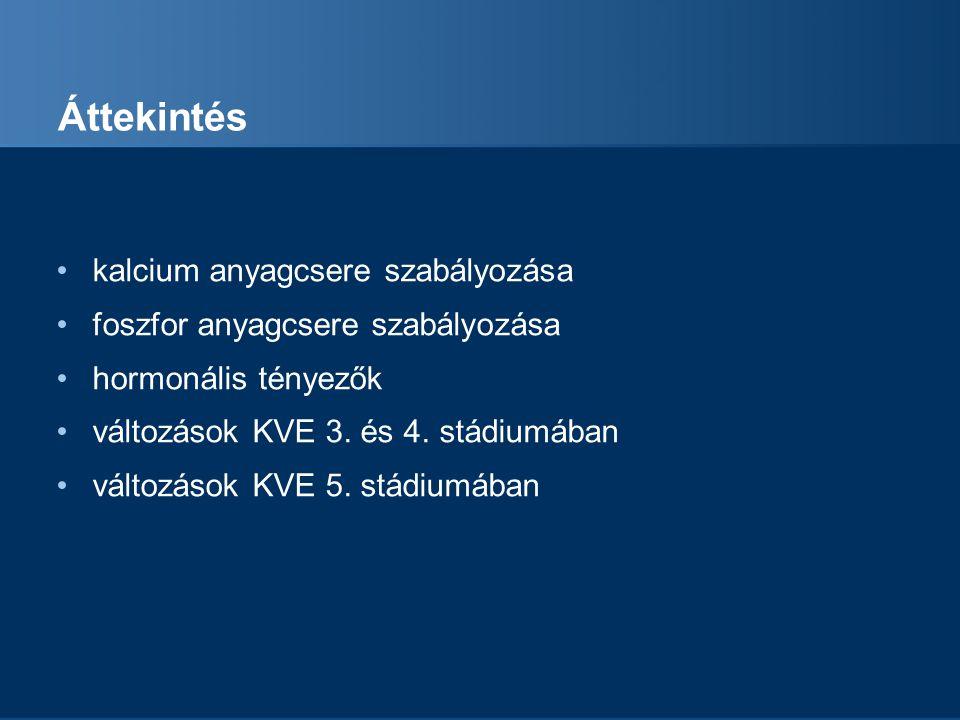 Áttekintés kalcium anyagcsere szabályozása foszfor anyagcsere szabályozása hormonális tényezők változások KVE 3. és 4. stádiumában változások KVE 5. s