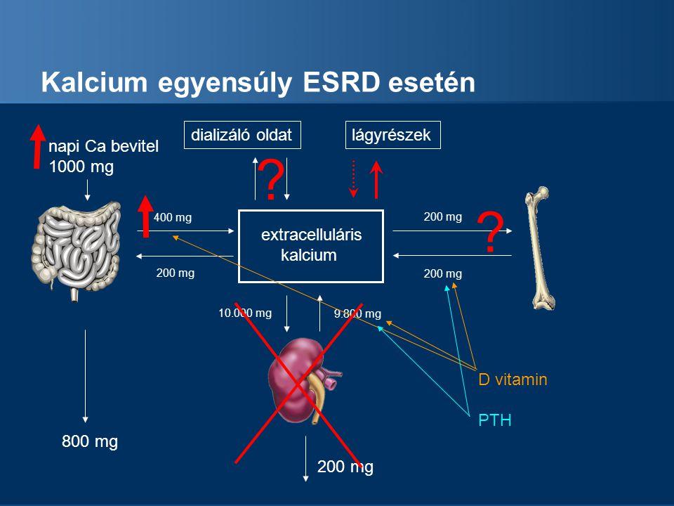 Kalcium egyensúly ESRD esetén extracelluláris kalcium napi Ca bevitel 1000 mg 800 mg 200 mg 400 mg 200 mg 9.800 mg 10.000 mg 200 mg D vitamin PTH ? di