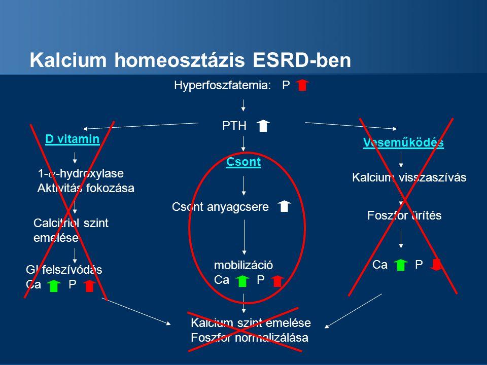 Kalcium homeosztázis ESRD-ben Hyperfoszfatemia: P PTH Csont anyagcsere mobilizáció Ca P D vitamin Calcitriol szint emelése GI felszívódás Ca P Kalcium