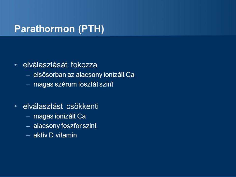 Parathormon (PTH) elválasztását fokozza –elsősorban az alacsony ionizált Ca –magas szérum foszfát szint elválasztást csökkenti –magas ionizált Ca –ala