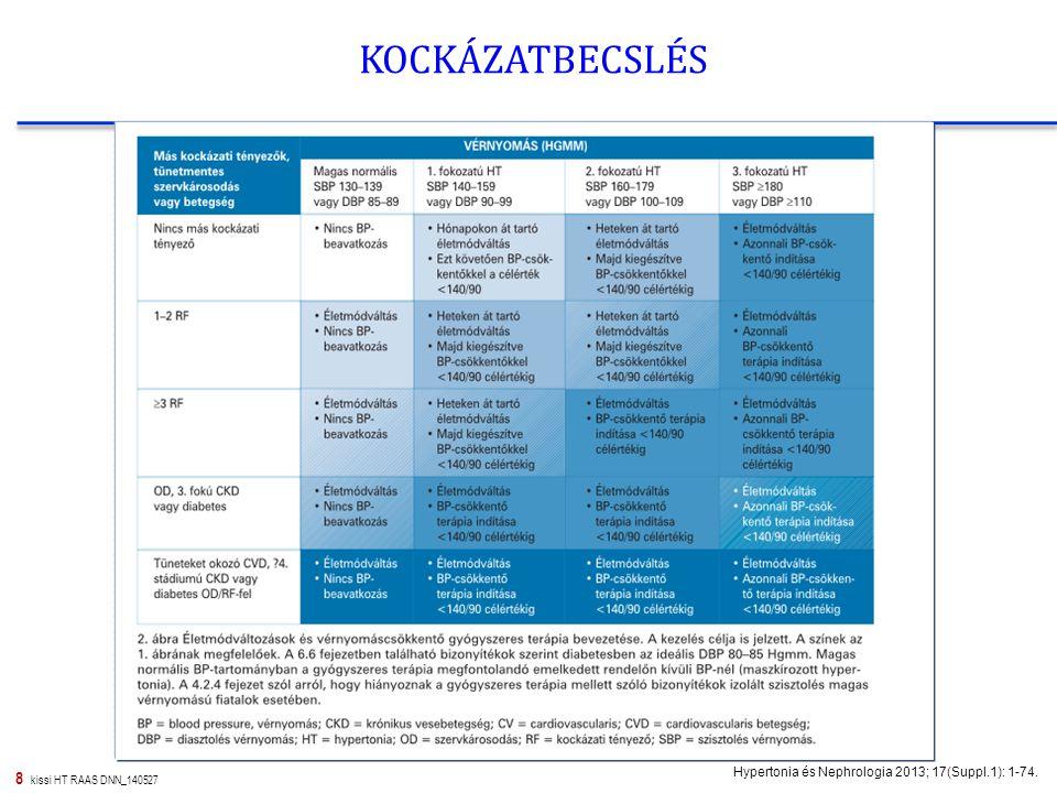 8 kissi HT RAAS DNN_140527 KOCKÁZATBECSLÉS Hypertonia és Nephrologia 2013; 17(Suppl.1): 1-74.