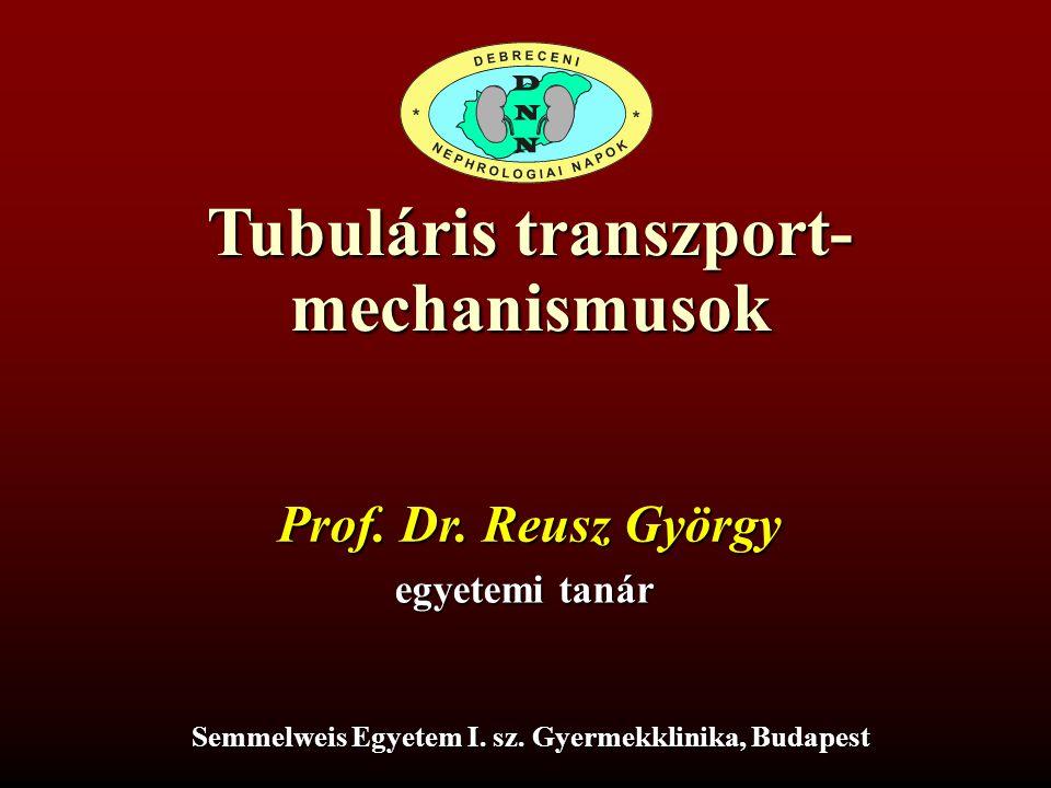 Tubuláris transzport- mechanismusok Prof. Dr. Reusz György egyetemi tanár Semmelweis Egyetem I. sz. Gyermekklinika, Budapest