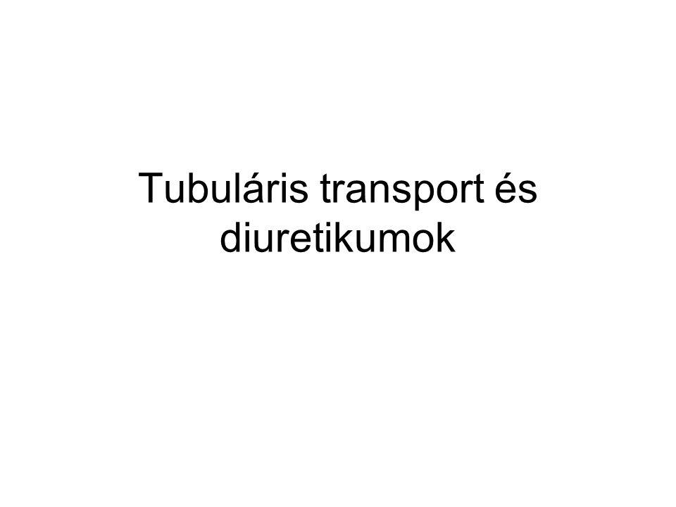 Tubuláris transport és diuretikumok