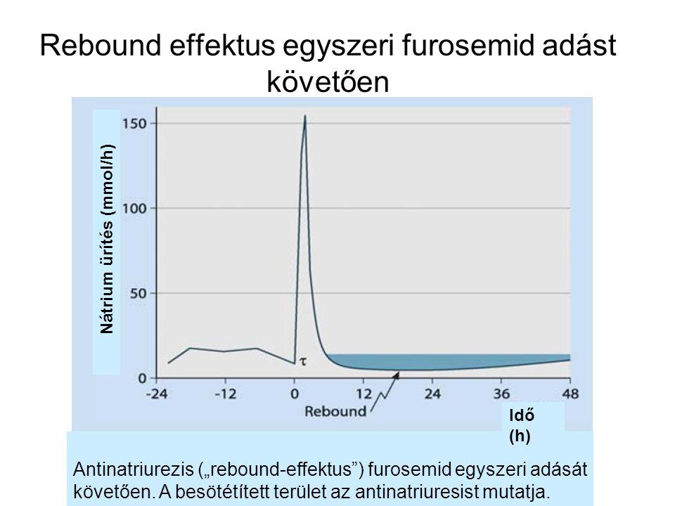 """Rebound effektus egyszeri furosemid adást követően Antinatriurezis (""""rebound-effektus"""") furosemid egyszeri adását követően. A besötétített terület az"""