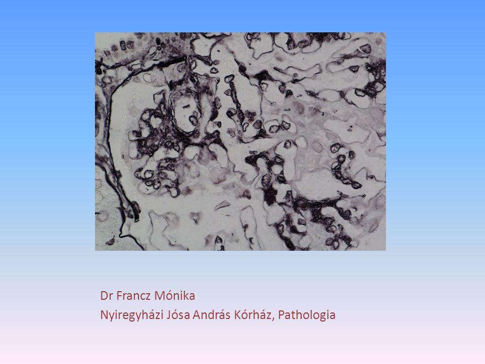 Dr Francz Mónika Nyiregyházi Jósa András Kórház, Pathologia
