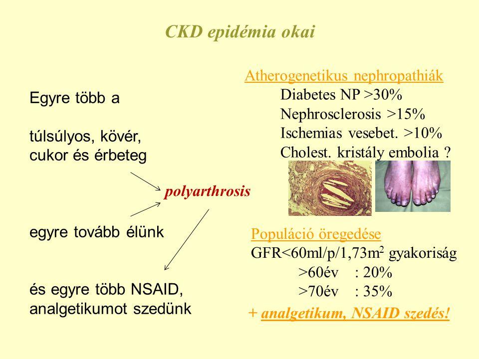 Atherogenetikus nephropathiák Diabetes NP >30% Nephrosclerosis >15% Ischemias vesebet. >10% Cholest. kristály embolia ? CKD epidémia okai Populáció ör