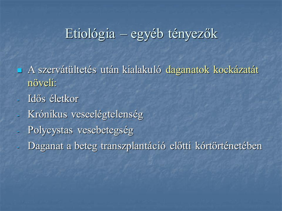 Etiológia –egyéb tényezők Ismert carcinogén hatások: dohányzás, UV-sugárzás Ismert carcinogén hatások: dohányzás, UV-sugárzás Ismételt fertőzések, tra