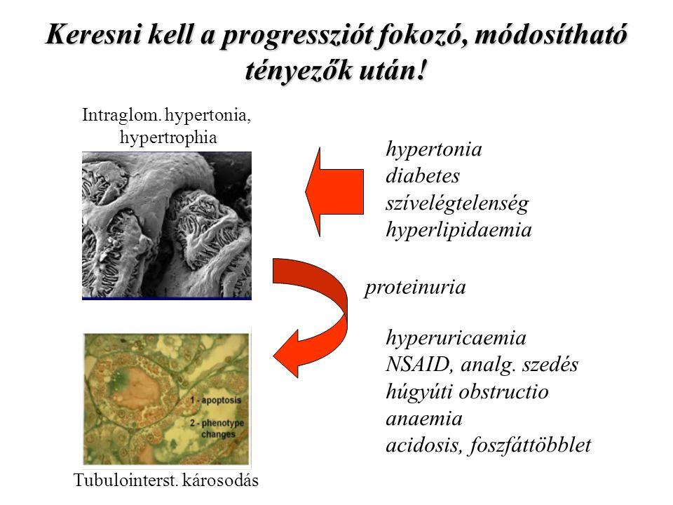Keresni kell a progressziót fokozó, módosítható tényezők után! hypertonia diabetes szívelégtelenség hyperlipidaemia hyperuricaemia NSAID, analg. szedé