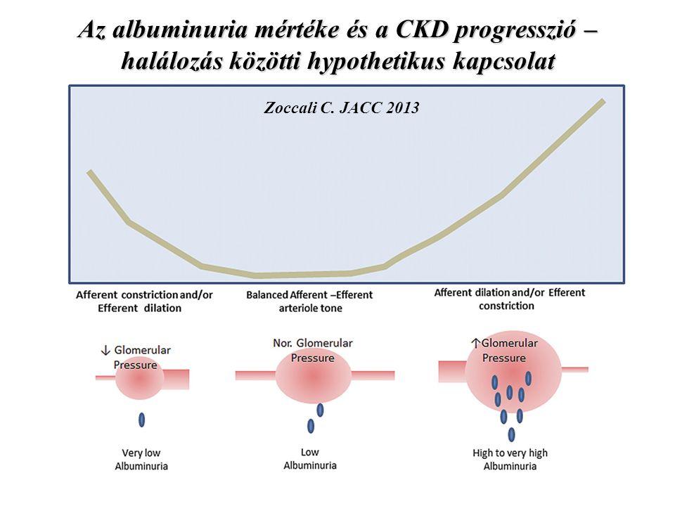 Az albuminuria mértéke és a CKD progresszió – halálozás közötti hypothetikus kapcsolat Zoccali C. JACC 2013