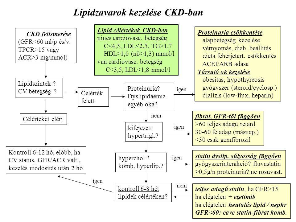 CKD felismerése (GFR<60 ml/p és/v. TPCR>15 vagy ACR>3 mg/mmol) Lipidszintek ? CV betegség ? Célértéket eléri Célérték felett Kontroll 6-12 hó, előbb,