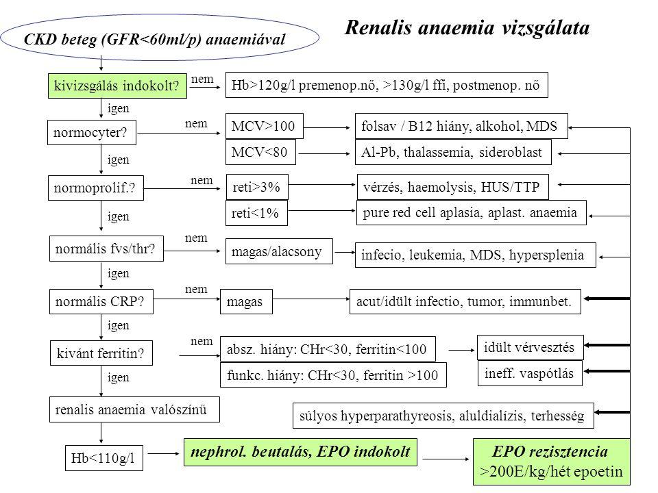 CKD beteg (GFR<60ml/p) anaemiával MCV>100 folsav / B12 hiány, alkohol, MDS normocyter? MCV<80Al-Pb, thalassemia, sideroblast absz. hiány: CHr<30, ferr