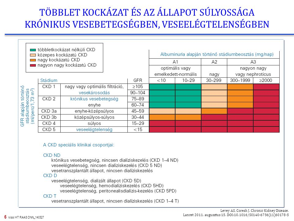 7 kissi HT RAAS DNN_140527 A VÉRNYOMÁSCSÖKKENTŐ GYÓGYSZERCSOPORTOK (TAGJAINAK) LEHETSÉGES ÉS JAVASOLT KOMBINÁCIÓI Hypertonia és Nephrologia 2013; 17(Suppl.1): 1-74.