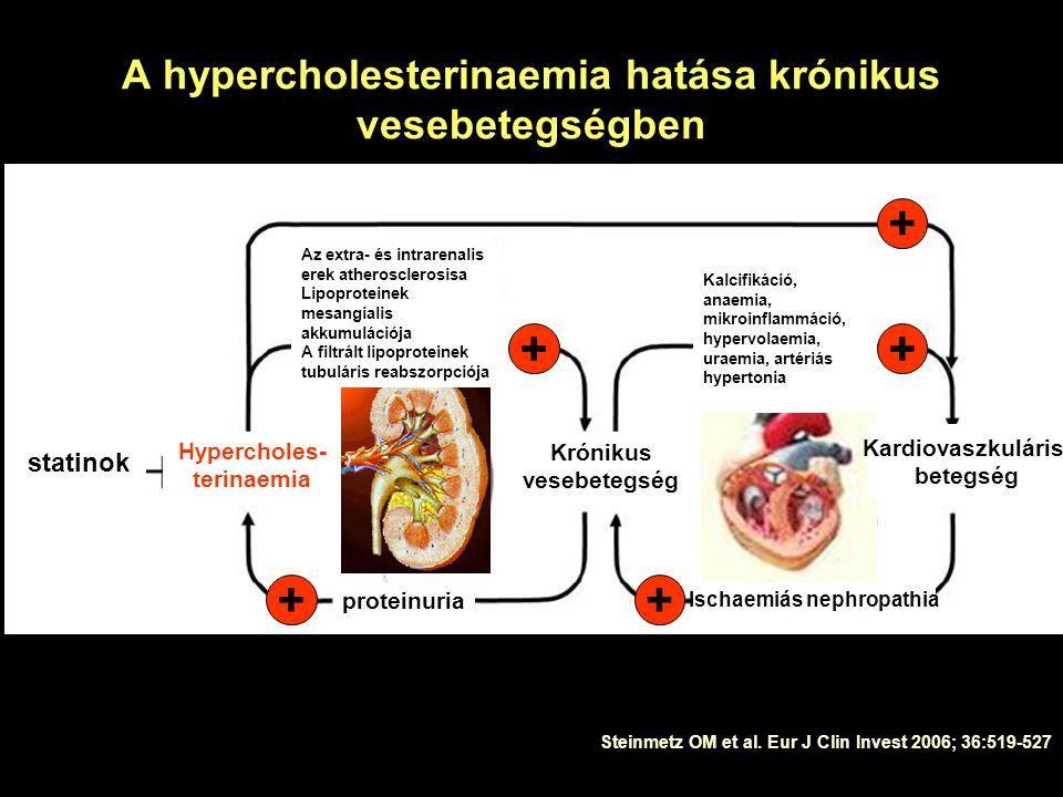 A hypercholesterinaemia hatása krónikus vesebetegségben Steinmetz OM et al.