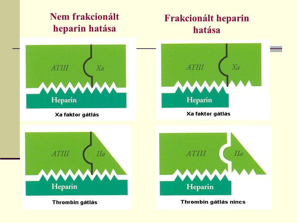 Nem frakcionált heparin hatása Frakcionált heparin hatása
