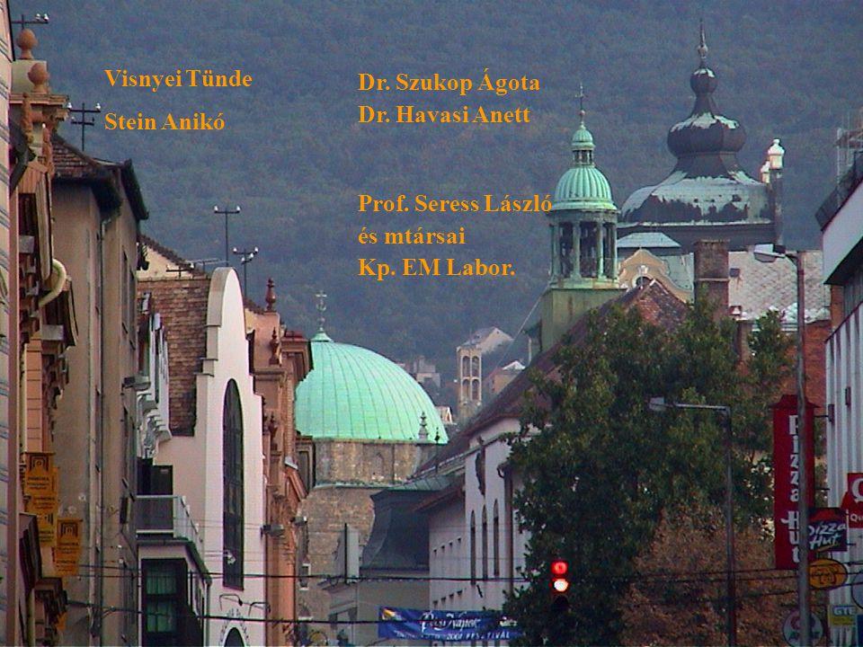 Visnyei Tünde Stein Anikó Prof.Seress László és mtársai Kp.