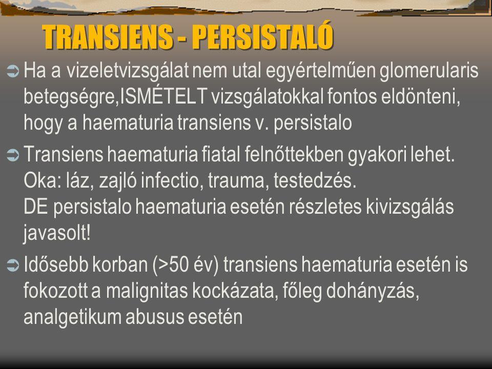 TRANSIENS - PERSISTALÓ  Ha a vizeletvizsgálat nem utal egyértelműen glomerularis betegségre,ISMÉTELT vizsgálatokkal fontos eldönteni, hogy a haematur