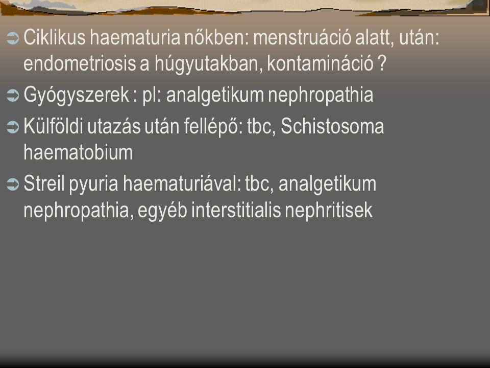  Ciklikus haematuria nőkben: menstruáció alatt, után: endometriosis a húgyutakban, kontamináció ?  Gyógyszerek : pl: analgetikum nephropathia  Külf