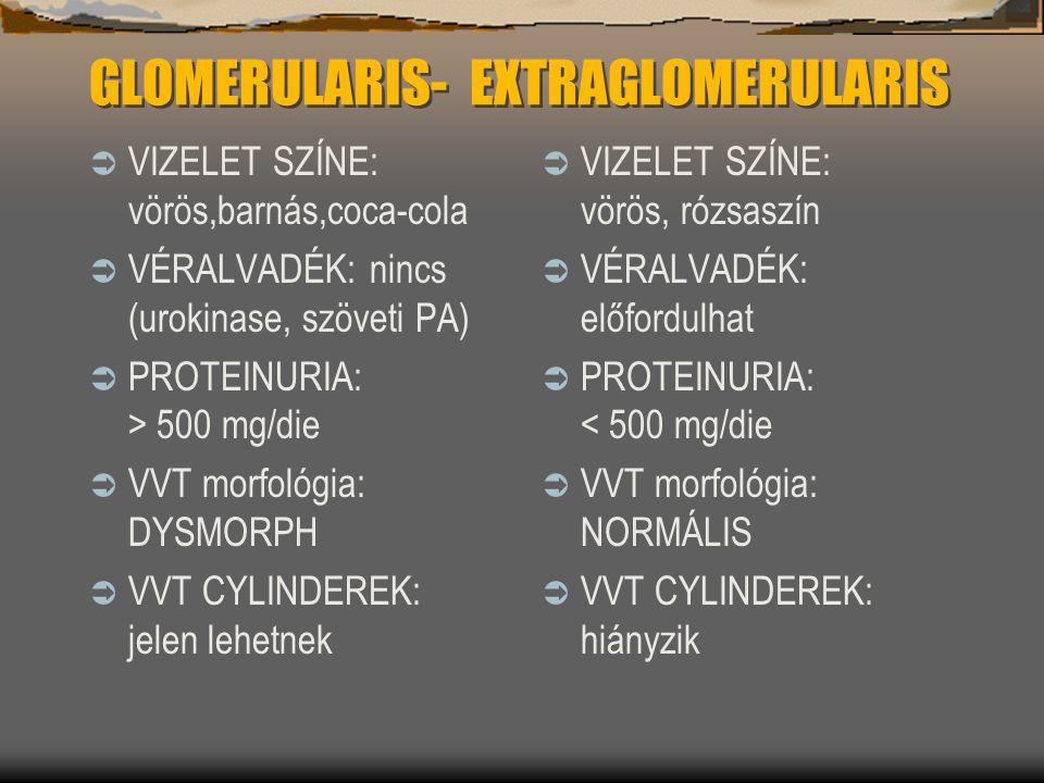 GLOMERULARIS- EXTRAGLOMERULARIS  VIZELET SZÍNE: vörös,barnás,coca-cola  VÉRALVADÉK: nincs (urokinase, szöveti PA)  PROTEINURIA: > 500 mg/die  VVT
