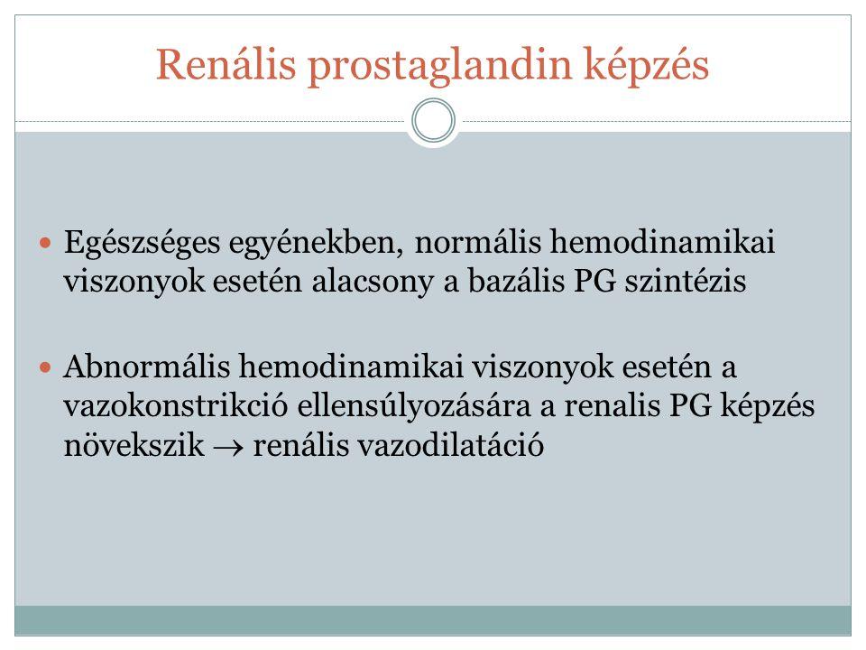 Renális prostaglandin képzés Egészséges egyénekben, normális hemodinamikai viszonyok esetén alacsony a bazális PG szintézis Abnormális hemodinamikai v