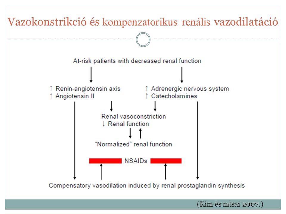 Vazokonstrikció és kompenzatorikus renális vazodilatáció (Kim és mtsai 2007.)