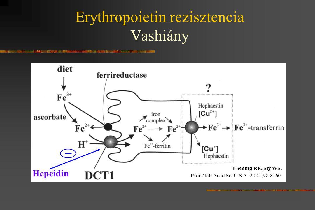 Erythropoietin rezisztencia Vashiány Hepcidin Fleming RE, Sly WS. Proc Natl Acad Sci U S A. 2001,98:8160