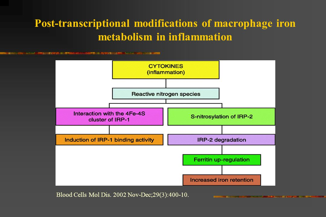 Post-transcriptional modifications of macrophage iron metabolism in inflammation Blood Cells Mol Dis. 2002 Nov-Dec;29(3):400-10.