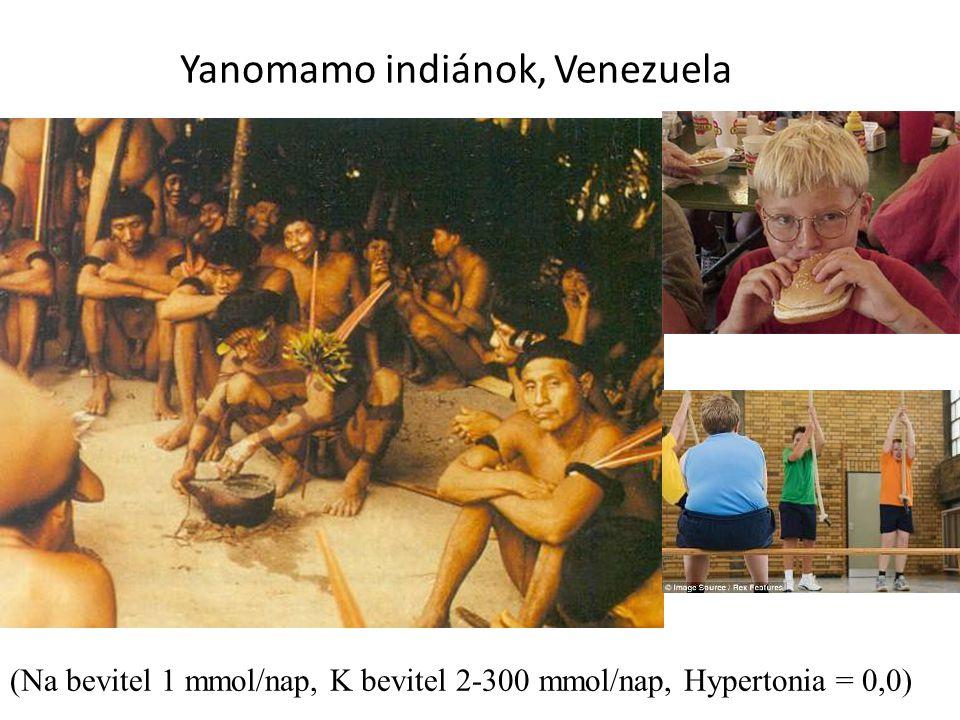 Yanomamo indiánok, Venezuela 7/24/2014Reusz: hypertonia19 (Na bevitel 1 mmol/nap, K bevitel 2-300 mmol/nap, Hypertonia = 0,0)