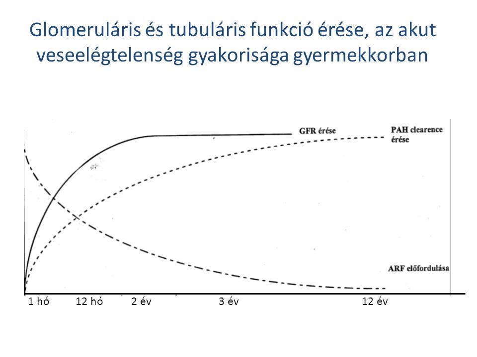 Glomeruláris és tubuláris funkció érése, az akut veseelégtelenség gyakorisága gyermekkorban 1 hó12 hó 2 év3 év12 év