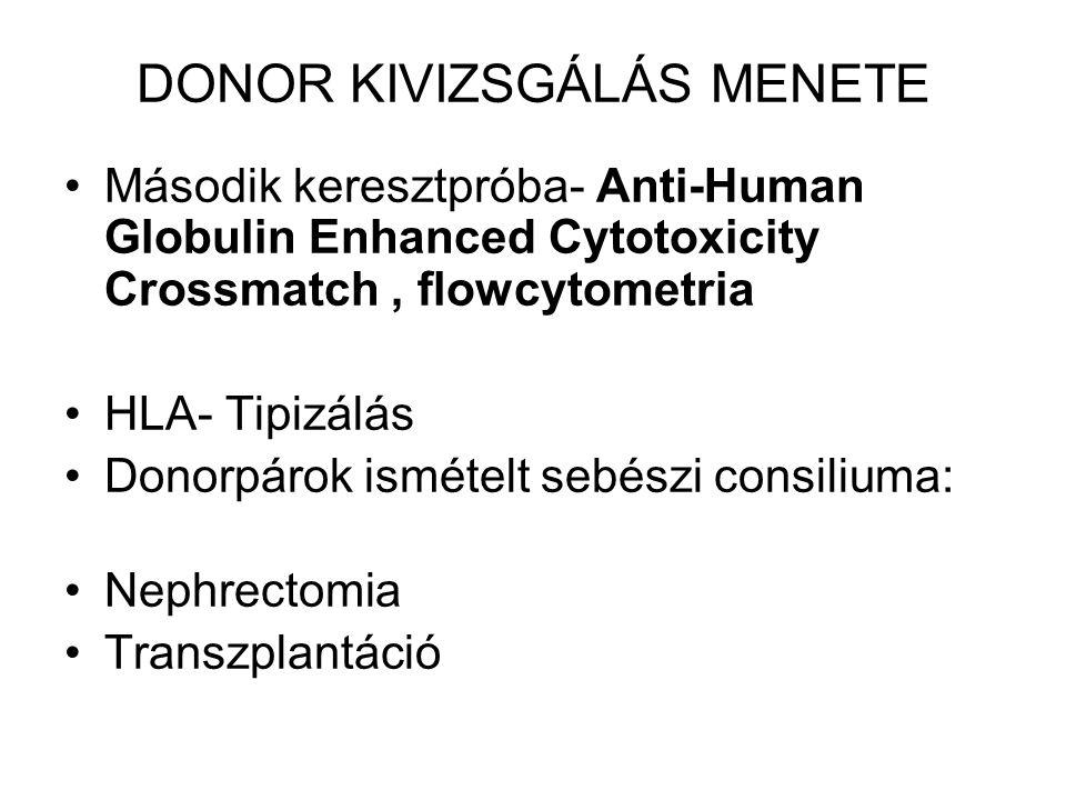 DONOR KIVIZSGÁLÁS MENETE Második keresztpróba- Anti-Human Globulin Enhanced Cytotoxicity Crossmatch, flowcytometria HLA- Tipizálás Donorpárok ismételt