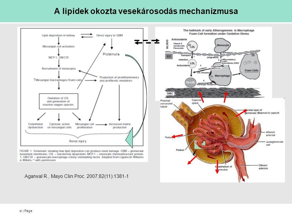 sl   Page A lipidek okozta vesekárosodás mechanizmusa Agarwal R., Mayo Clin Proc. 2007;82(11):1381-1 Proteinuria