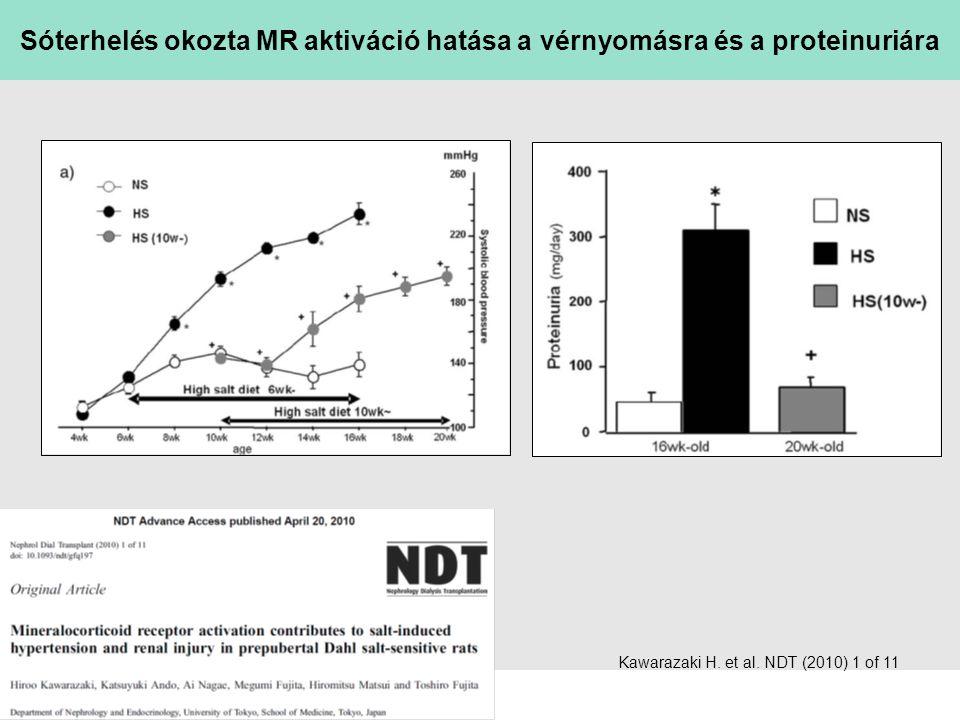 sl   Page Kawarazaki H. et al. NDT (2010) 1 of 11 Sóterhelés okozta MR aktiváció hatása a vérnyomásra és a proteinuriára