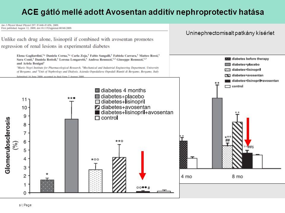 sl | Page ACE gátló mellé adott Avosentan additív nephroprotectiv hatása Uninephrectomisalt patkány kísérlet
