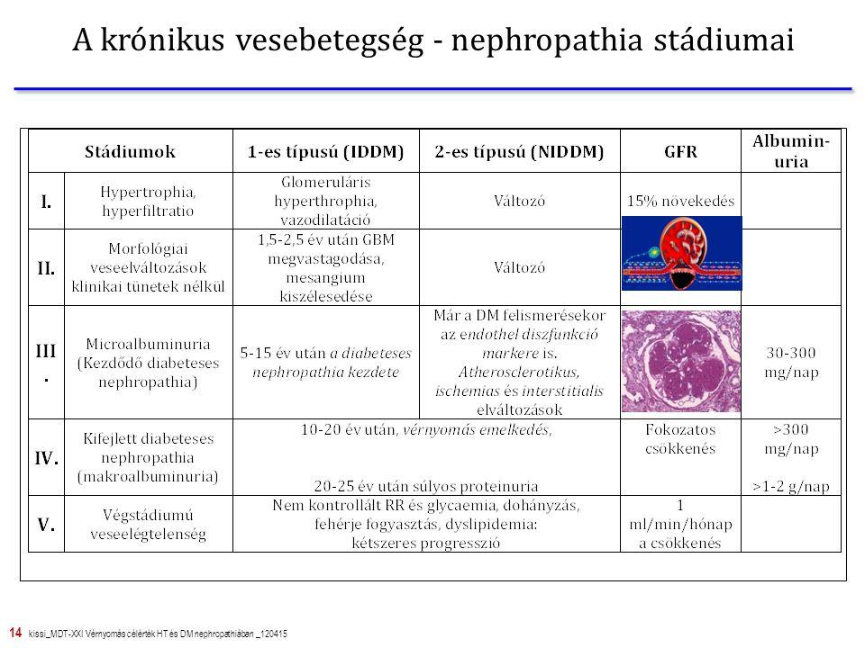 14 kissi_MDT-XXI Vérnyomás célérték HT és DM nephropathiában _120415 A krónikus vesebetegség - nephropathia stádiumai