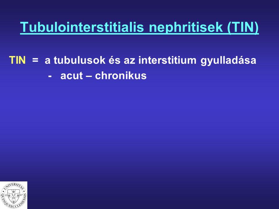 Tubulointerstitialis nephritisek (TIN) TIN = a tubulusok és az interstitium gyulladása - acut – chronikus