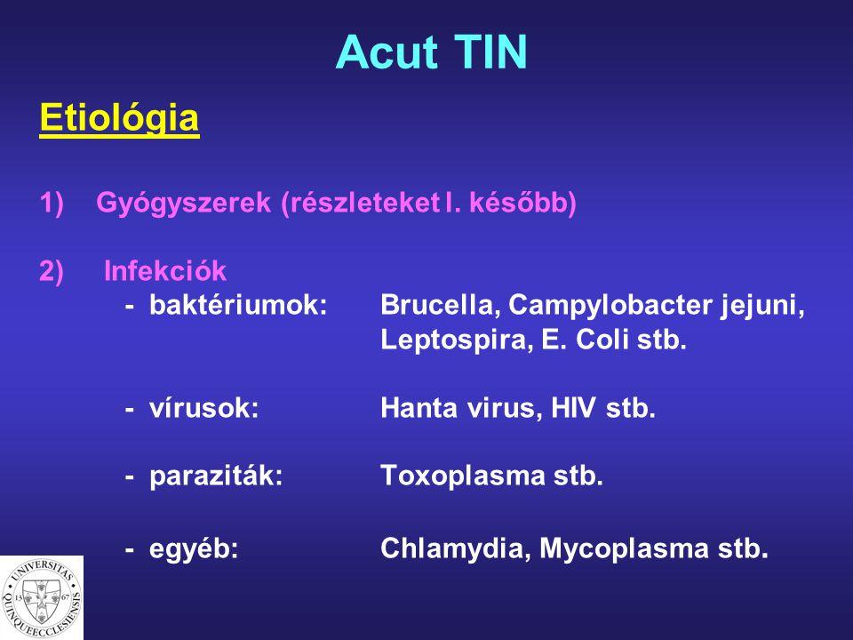 Etiológia 1)Gyógyszerek (részleteket l. később) 2) Infekciók - baktériumok:Brucella, Campylobacter jejuni, Leptospira, E. Coli stb. - vírusok:Hanta vi